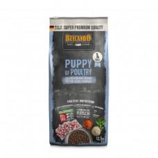 Belcando Puppy GF Poultry 12,5 кг